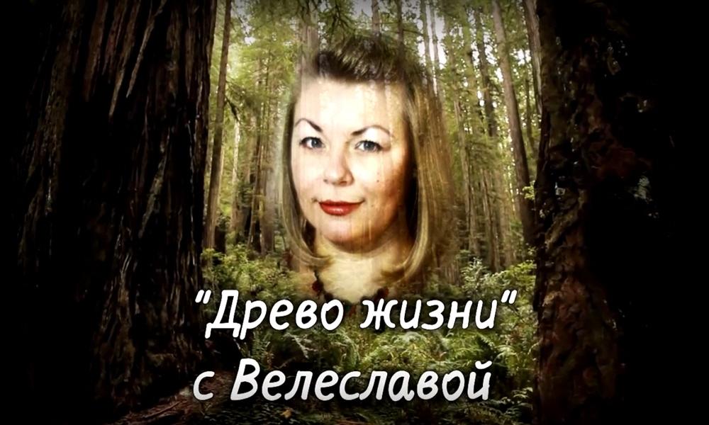 Авторская программа Древо Жизни с Велеславой
