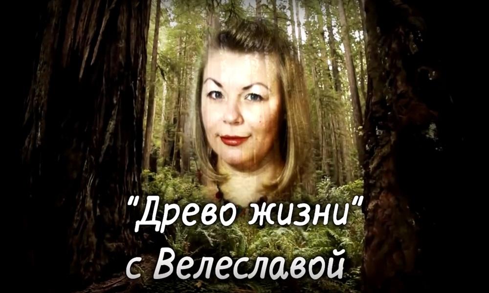 Программа Древо Жизни с Велеславой