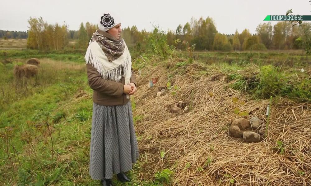 Выращивание картошки в родовом поселении