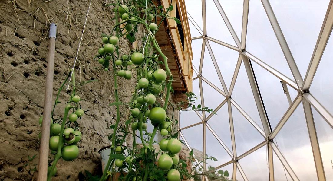 Живая растительная пища для всей семьи