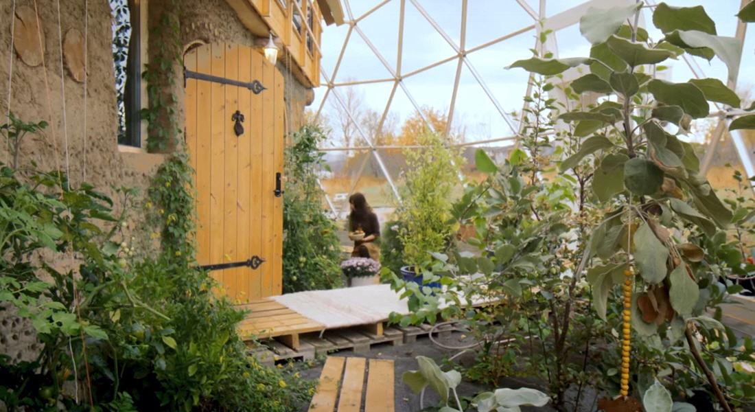 Создание круговой биологической цепи в саду