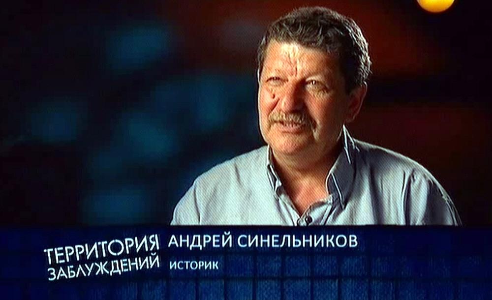 Андрей Синельников - историк
