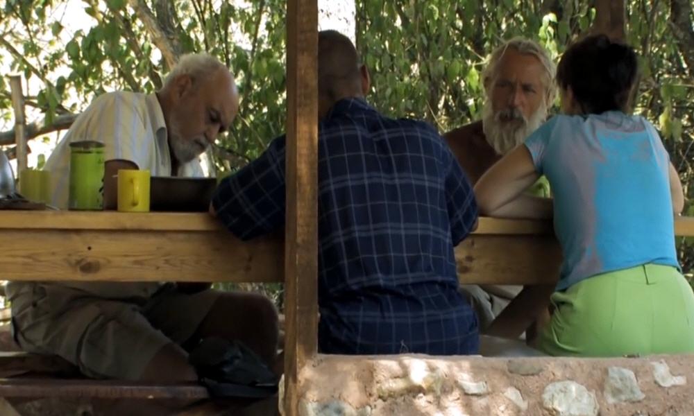 Центр лечения Рой - Как пчелиный яд помогает победить многие болезни